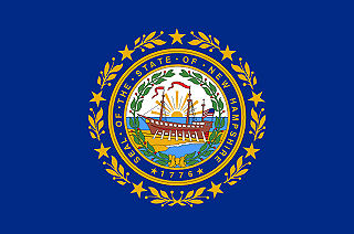 Official New Hampshire state flag.