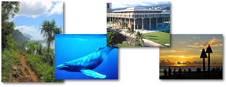Hawaii State collage of images.