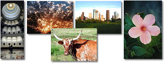 Texas State collage of images.