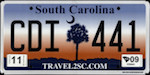 Image of the South Carolina state license.